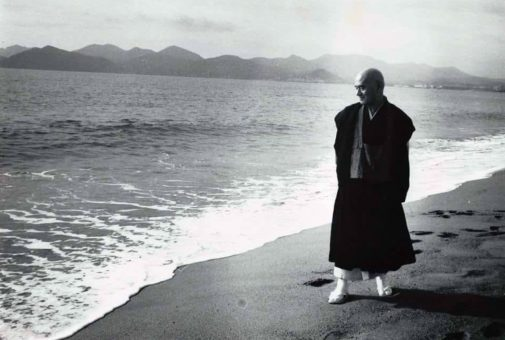 Hokyo Zanmai, el Samadhi del Espejo Tesoro (II)
